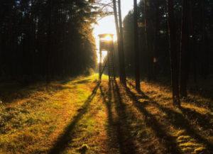 Sonnenuntergang Neuruppin